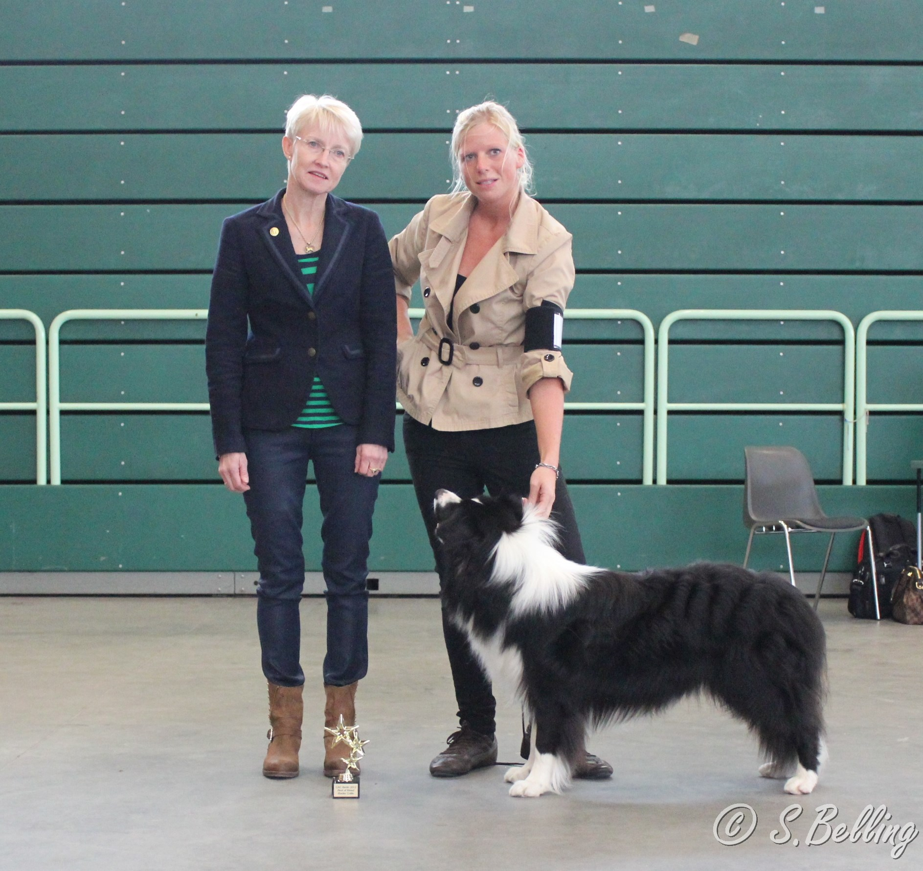 "CAC Berlin 2013 - BOB Border Collie ""Rosegarden Amigo Mojito"""