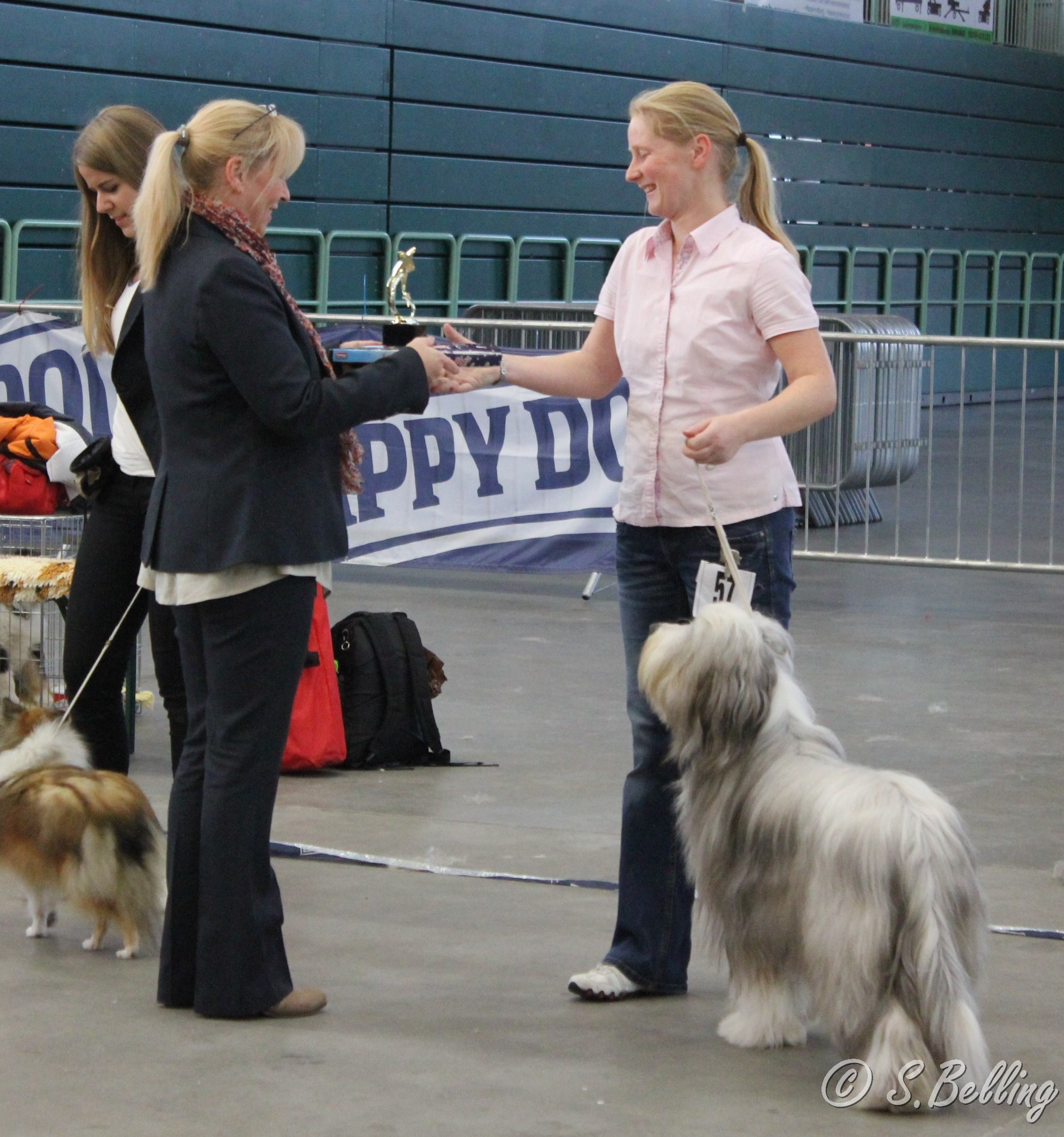 "Best Jugend  Bearded Collie ""Celtsdale Larger Than Life"""