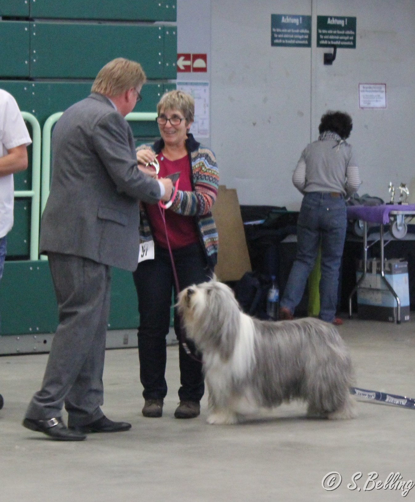 Best Veteran -Bearded Collie